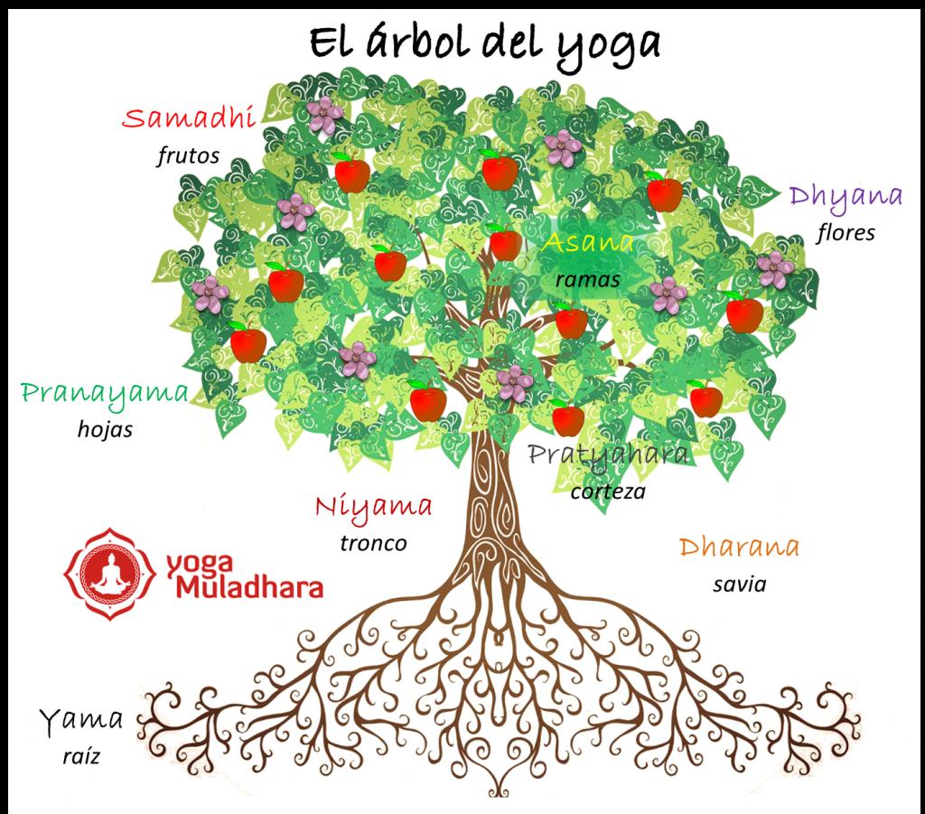 El rbol del yoga centro de yoga muladhara for Arbol con raices y frutos
