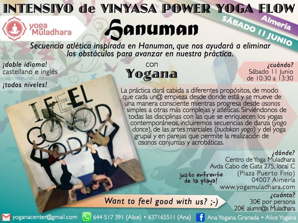 Taller Vinyasa Power Yoga Flow