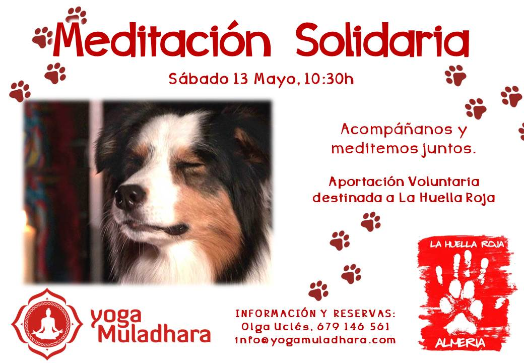 Meditación Solidaria Almeria