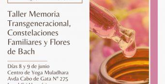 Taller vivencial: Memoria transgeneracional, Constelaciones y Flores de Bach.