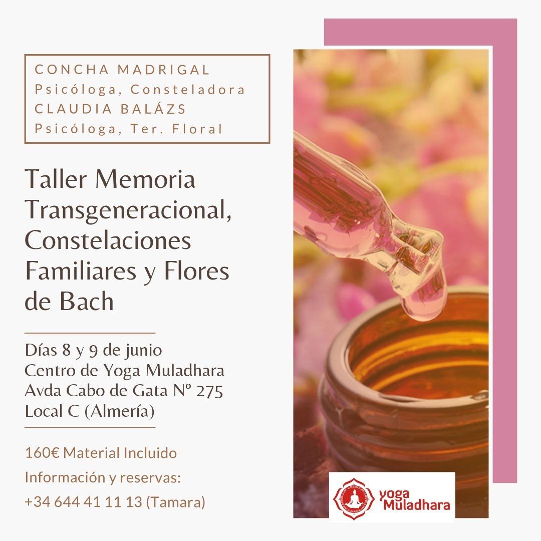 Taller de Memoria transgeneracional, Constelaciones y Flores de Bach
