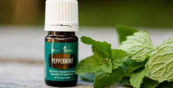 Aceite Esencial de Menta Piperita (Peppermint)