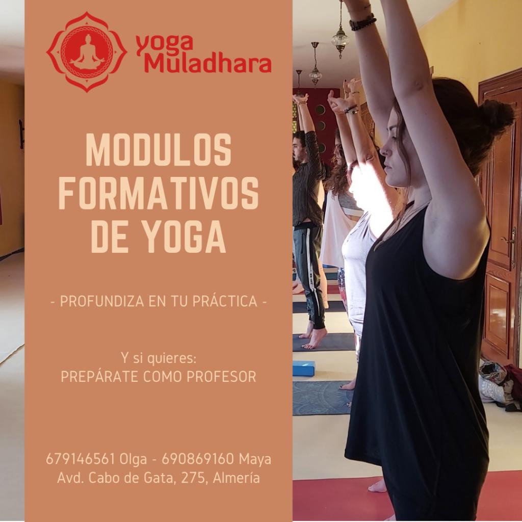 Modulos Formativos de Yoga